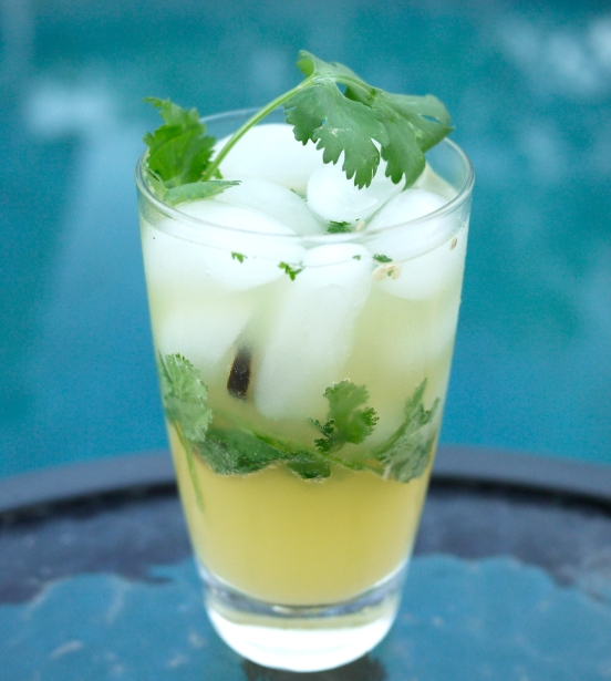 spicy pineapple drink