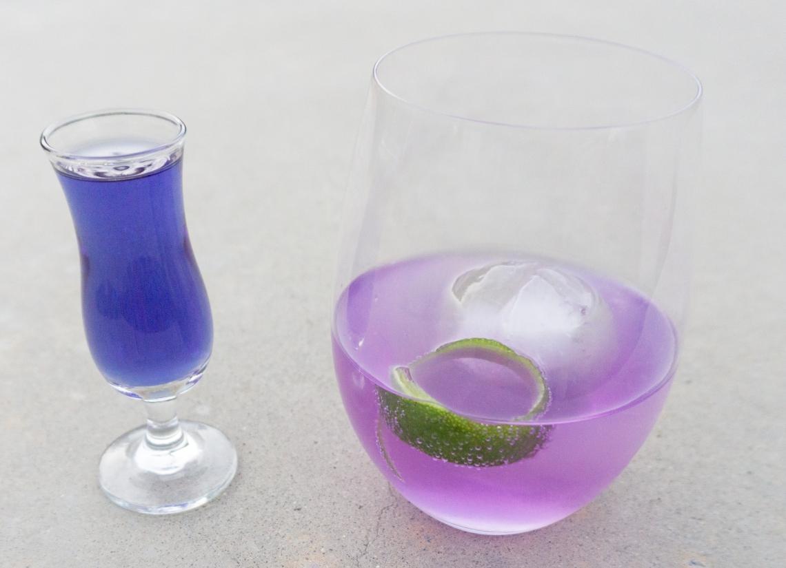 gin-tonic-edited
